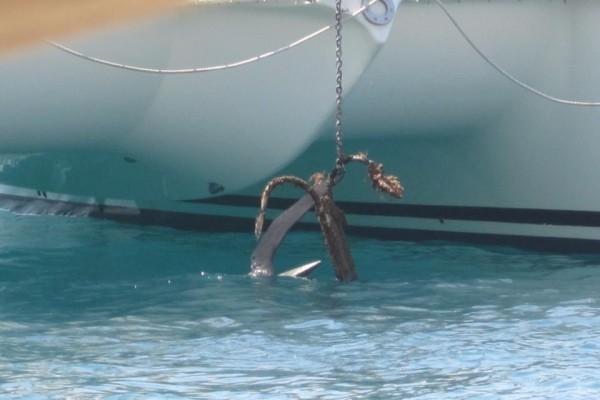 Who's anchor